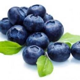 Blueberry Wild (Дика чорниця)